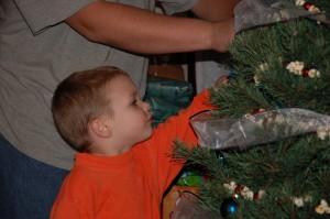 Karol and Tree